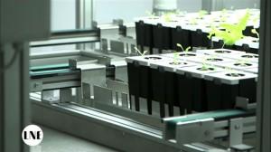 elcom greentech - ferme urbaine de Lyon